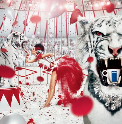 Lavazza Tiger